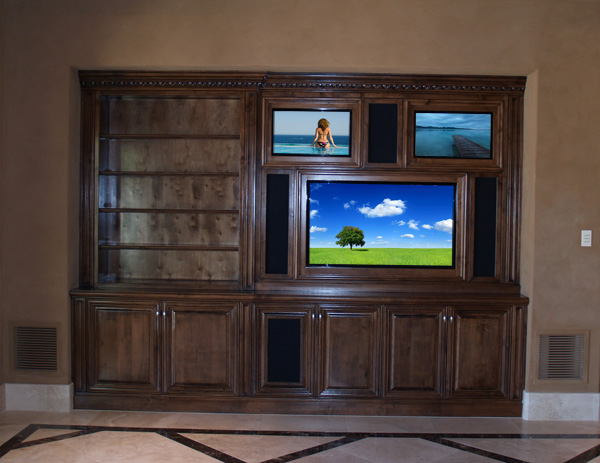 custom entertainment system